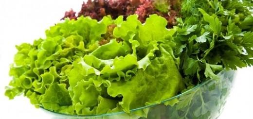 Sėjamoji salota